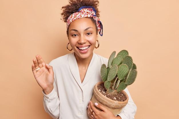 Fröhliche schöne afro-amerikanerin hält saftigen kaktus in topf lächelt im großen und ganzen genießt guten tag hält die handfläche angehoben trägt weißes hemd kopftuch über den kopf gebunden isoliert über beige wand