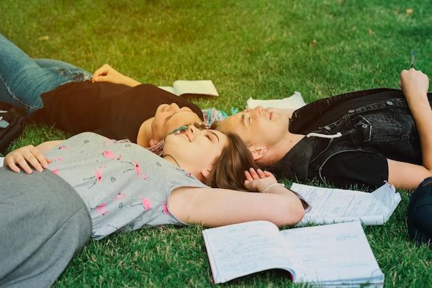 Fröhliche studenten lieben glücklich auf gras