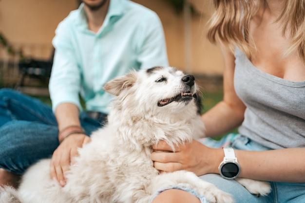 Fröhlicher alter hund, der lächelt, während er auf dem schoß seiner liebenden menschen sitzt. glückliches paar von jungs, die mit ihrem hund spielen.