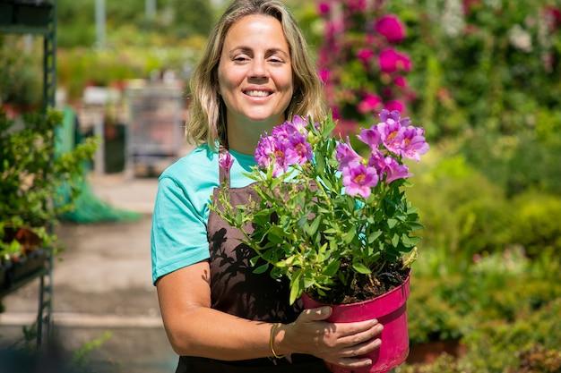 Fröhlicher weiblicher florist, der im gewächshaus geht, topfblütepflanze hält, wegschaut und lächelt. mittlere einstellung, vorderansicht. gartenarbeit oder botanikkonzept