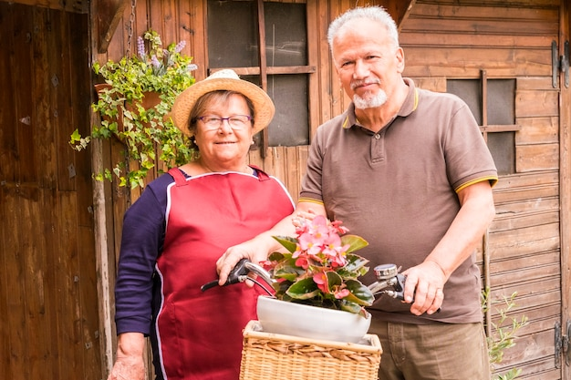 Fröhliches und fröhliches seniorenpaar genießt die freizeitbeschäftigung im freien im garten zu hause. holzhäuschen und altes fahrrad. hausarbeit, um sich um das haus zu kümmern. konzept im ruhestand