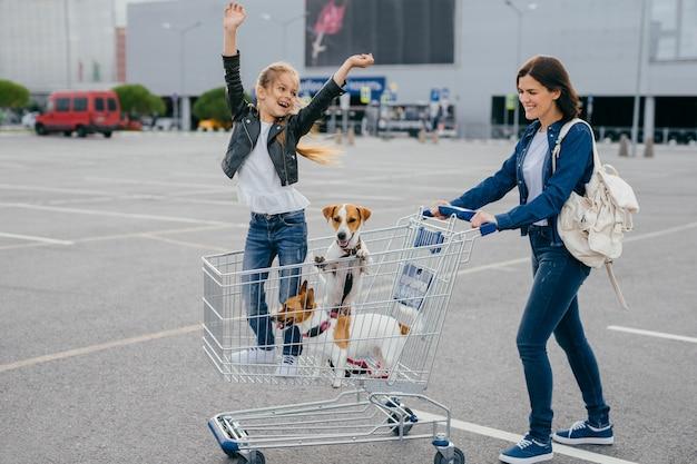 Frohe junge mutter, tochter und ihre beiden hunde im einkaufswagen kehren vom einkaufszentrum nach hause zurück