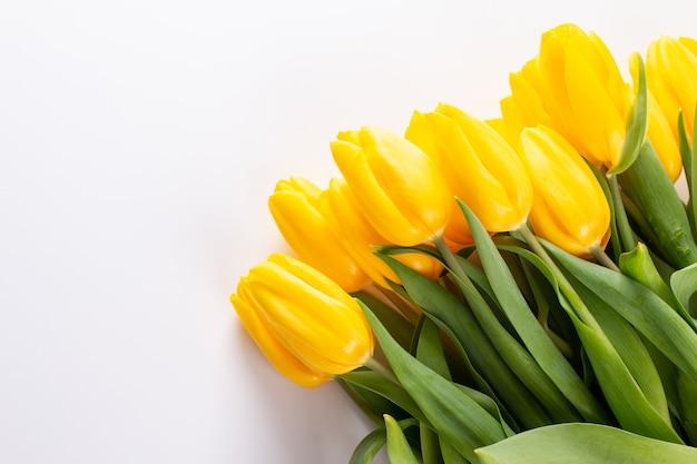 Frohe ostern raum für text umgeben gelbe blumen