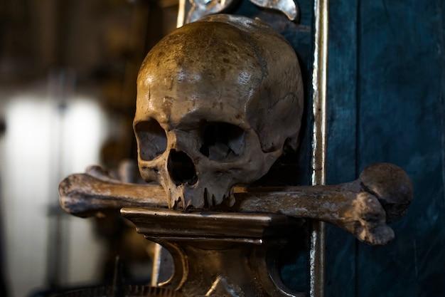 Frontansicht des menschlichen schädels auf dunklem hintergrund. halloween- und todeskonzept