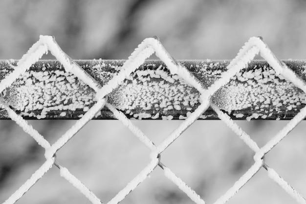 Frost auf einem zaun