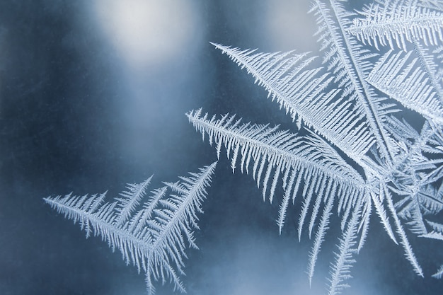 Frostige muster auf der fensterglasnahaufnahme. wintersaison
