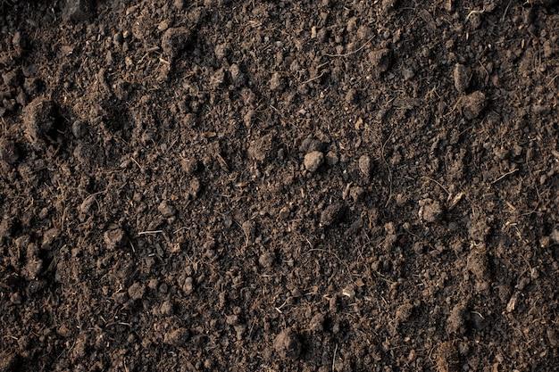 Fruchtbarer lehmboden geeignet für das pflanzen, bodenbeschaffenheitshintergrund.