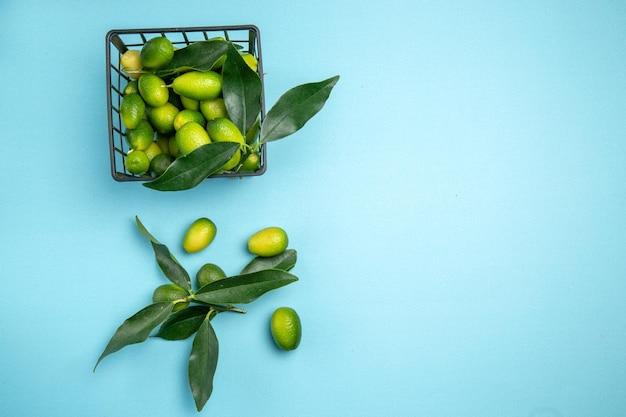 Früchte die appetitlichen zitrusfrüchte mit blättern im grauen korb