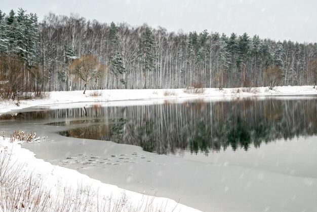 Frühe winterlandschaft mit waldbäumen, die im seewasser reflektiert werden