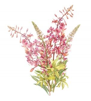 Frühling blüht den lokalisierten weidennerb- und lupinenbaum. aquarell hand gezeichnete abbildung.