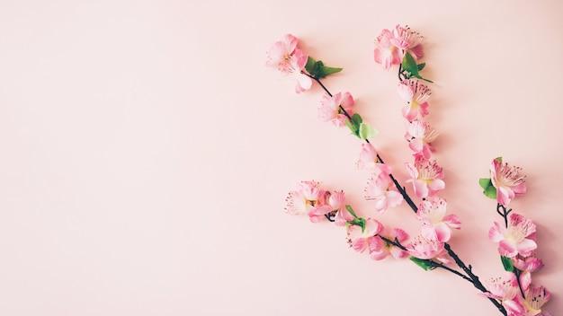 Frühling blüht hintergrund mit copyspace