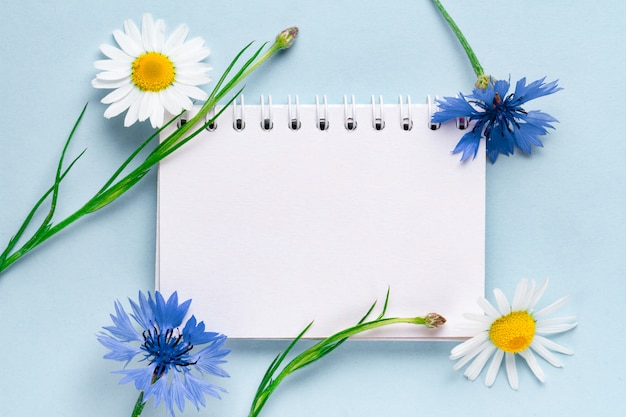 Frühling, feiertagshintergrund