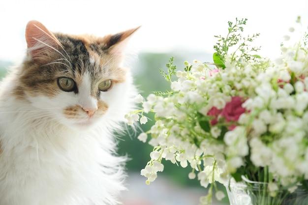 Frühling, flauschige hauskatze und blumenstrauß der frühlingsblumen am fenster