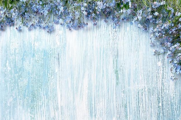 Frühling hintergrund. blaue vergissmeinnichtblumen auf hellblauem