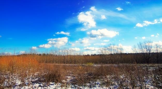 Frühling im zentralrussischen wald