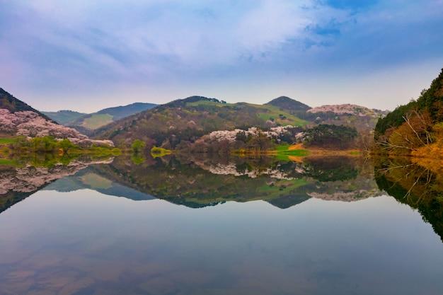 Frühling in korea, die landschaft spiegelt sich im see