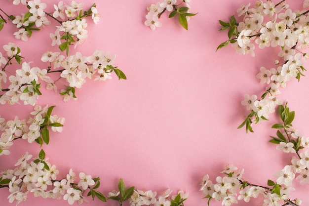 Frühlings- oder sommerhintergrund mit blühenden ästen auf dem rosa hintergrund