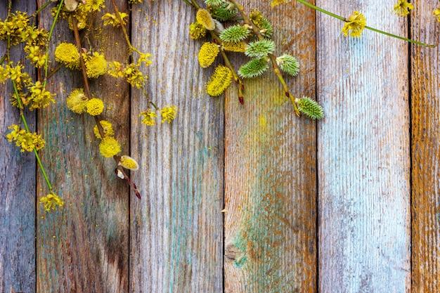 Frühlings-ostern-hintergrund der blühenden weide und des hartriegels verzweigt sich auf einen alten hölzernen hintergrund mit einer kopie des raumes