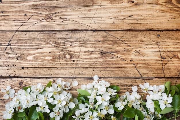 Frühlingsblühender zweig auf holz