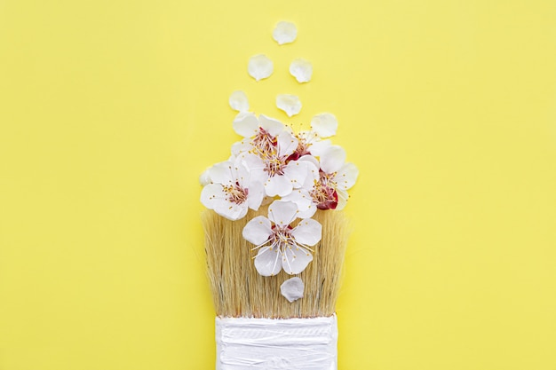 Frühlingsblütenkonzept. pinsel mit aprikosenblütenblume auf gelbem hintergrund.