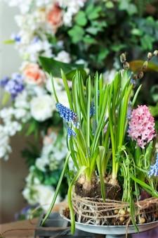 Frühlingsblumen als teil der inneneinrichtung