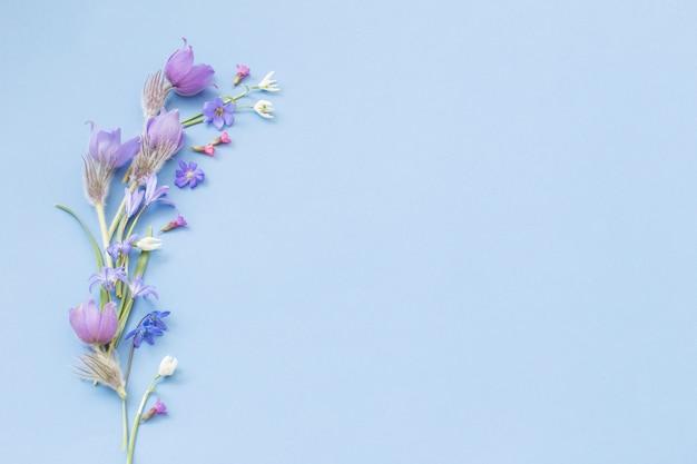 Frühlingsblumen auf blauem hintergrund