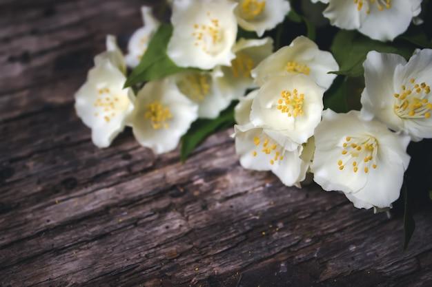 Frühlingsblumen auf hölzernem hintergrund. kartenkonzept, pastellfarben, nahaufnahme, textfreiraum.