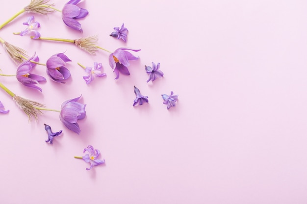 Frühlingsblumen auf papierhintergrund