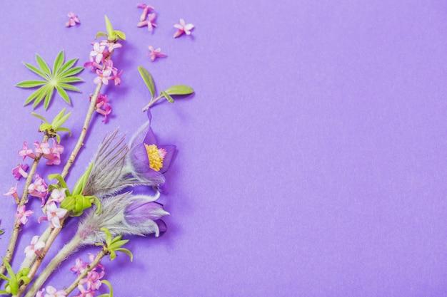 Frühlingsblumen auf violettem tisch