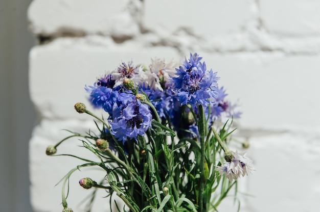 Frühlingsblumen auf weißem backsteinhintergrund eingestellt