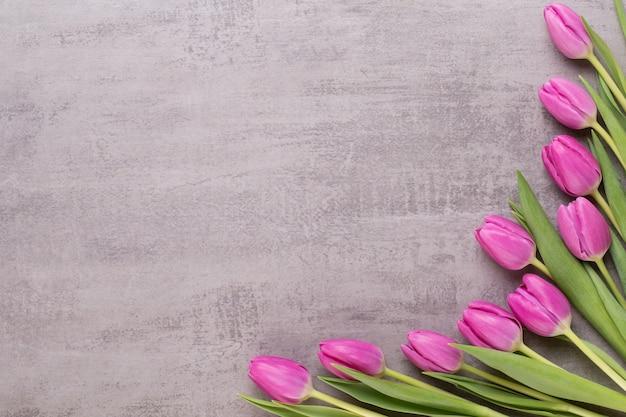 Frühlingsblumen, grußkarte, pastellfarbene tulpen auf dem grau.