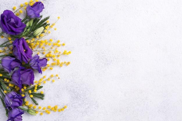 Frühlingsblumen mit exemplarplatz