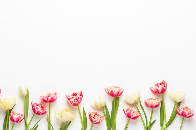 Frühlingsblumen. tulpen auf pastellfarben. grußkarte retro vintage-stil. muttertag, ostergrußkarte.
