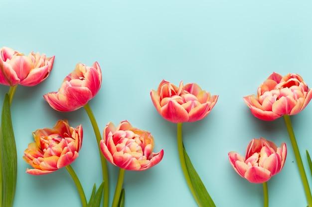 Frühlingsblumen, tulpen auf pastellfarben. retro vintage stil.