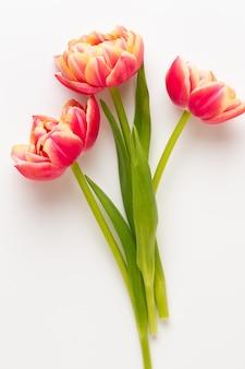 Frühlingsblumen. tulpen auf pastellfarbenhintergrund. grußkarte retro vintage-stil. muttertag, ostergrußkarte.