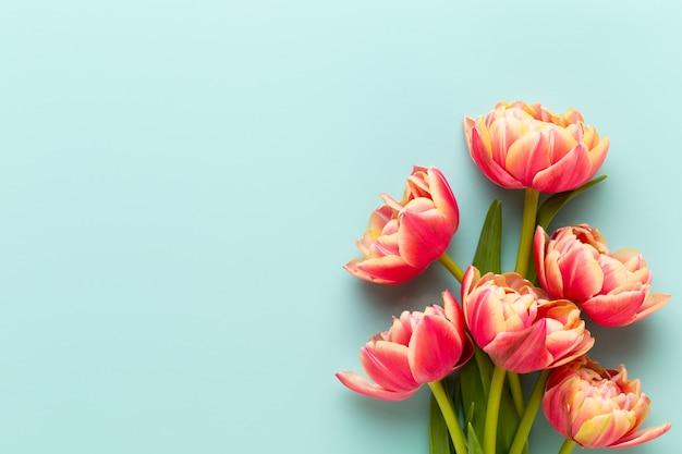 Frühlingsblumen. tulpen auf pastellfarbenhintergrund. grußkarte retro-vintage-stil. muttertag, ostergrußkarte.