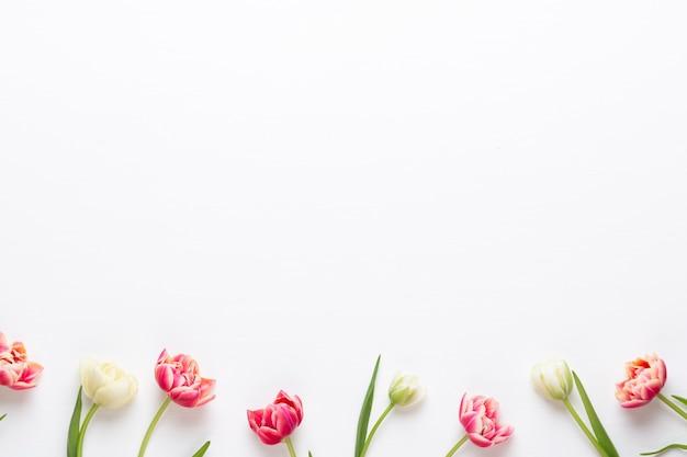 Frühlingsblumen. tulpen auf pastellfarbenhintergrund. grußkarte retro vintage-stil. muttertag, ostern