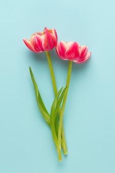 Frühlingsblumen, tulpen auf pastellfarbenhintergrund. retro vintage stil.