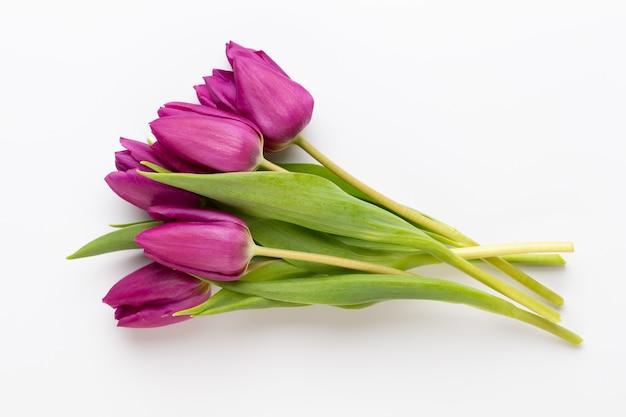 Frühlingsblumen. tulpen auf weißer oberfläche.