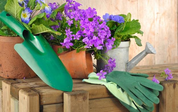 Frühlingsblumen und werkzeug