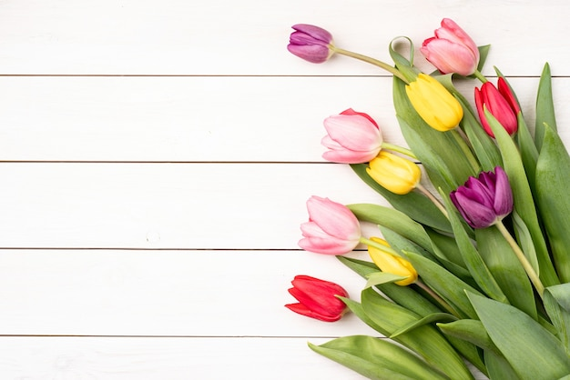 Frühlingsferien. flache tulpen weißer hölzerner hintergrund draufsicht flach lag