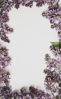 Frühlingsfliederblumen blühen auf einem zweig auf einem weißen hintergrund. weißer notizblock mit blumen. rahmen von blumen.
