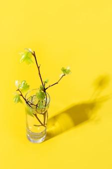 Frühlingsfrische grüne birke verzweigt sich durch flüssiges wasser auf gelb.