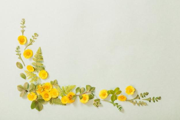 Frühlingsgelbe blüten