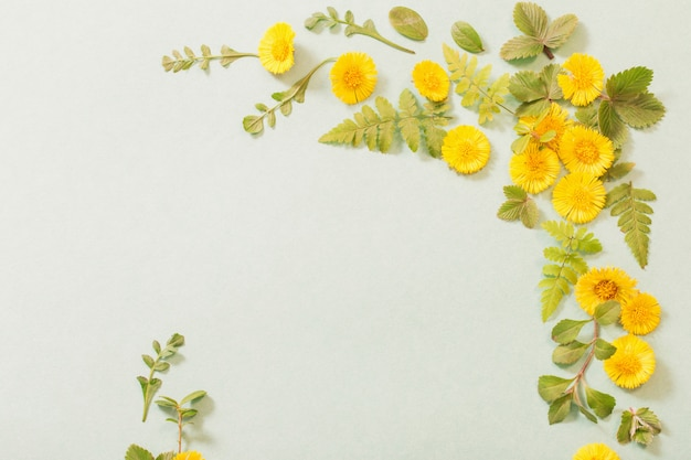 Frühlingsgelbe blumen auf papier