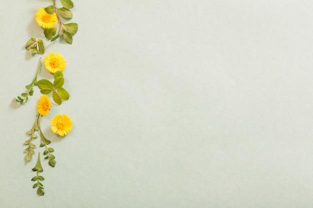 Frühlingsgelbe blumen auf papierhintergrund