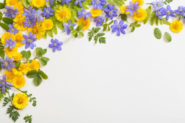 Frühlingsgelbe und violette blumen auf papierhintergrund