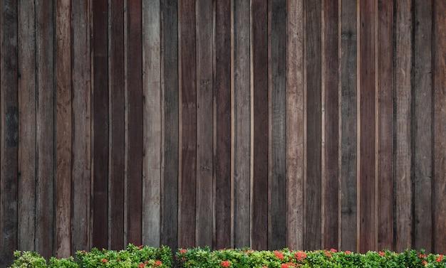 Frühlingsgrüne blumenspitze über hölzernem hintergrund, alte hölzerne musterwand für hintergrund