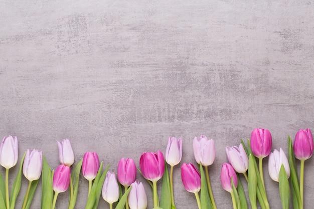 Frühlingsgrußkarte, rosa farbtulpen auf dem grauen hintergrund.