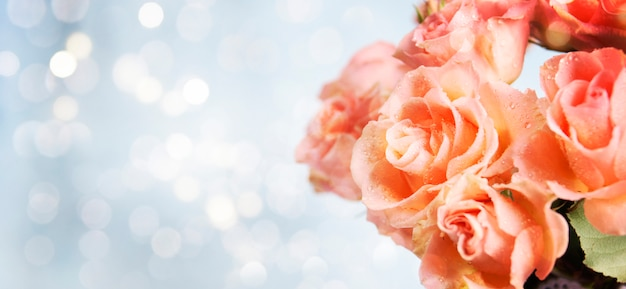 Frühlingshintergrund mit rosen